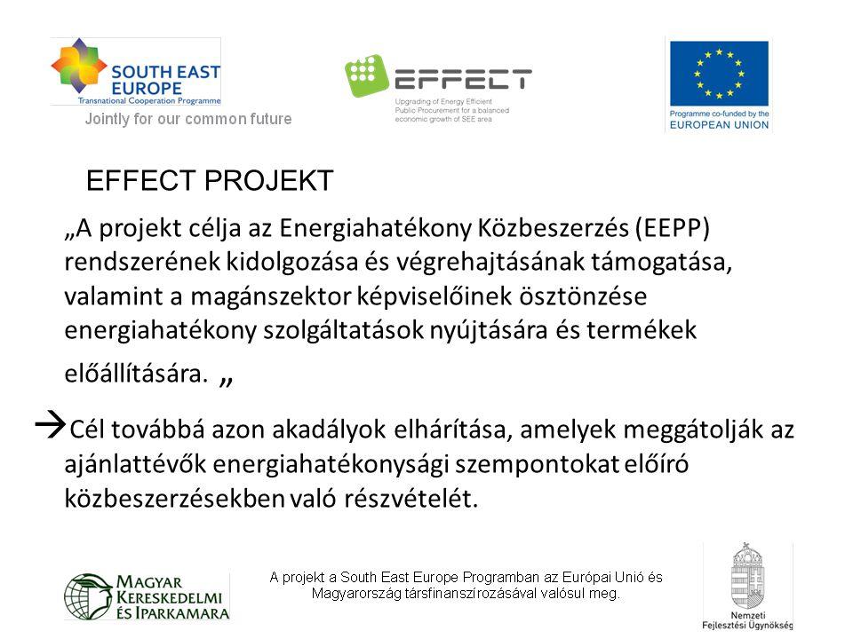 """""""A projekt célja az Energiahatékony Közbeszerzés (EEPP) rendszerének kidolgozása és végrehajtásának támogatása, valamint a magánszektor képviselőinek ösztönzése energiahatékony szolgáltatások nyújtására és termékek előállítására."""