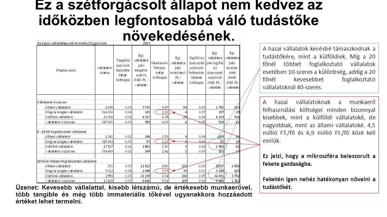 Amit nehéz mutatószámokkal bizonyítani Egy alapvetően túlpolitizált létből kiemelkedő elit, mely létét nem annyira a teljesítményének, hanem inkább annak köszönheti, hogy jó időben jó helyen volt, megszerezte a magyar vállalatok számára növekedési lehetőséget biztosító állami beruházási források zömét és ezeket nem garantáltan a piaci versenyszabályok szerint osztja el.