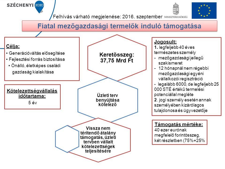 Fiatal mezőgazdasági termelők induló támogatása Keretösszeg: 37,75 Mrd Ft Üzleti terv benyújtása kötelező Kötelezettségvállalás időtartama: 5 év Vissz