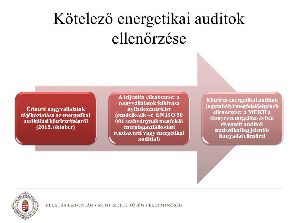 Kötelező energetikai auditok ellenőrzése Érintett nagyvállalatok tájékoztatása az energetikai auditálási kötelezettségről (2015. október) A teljesítés