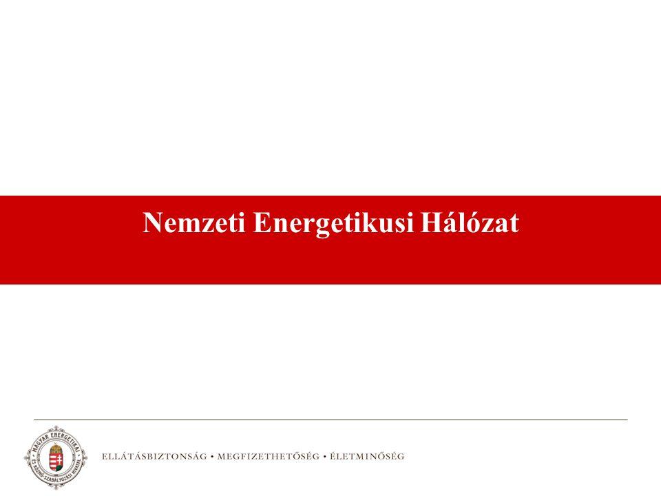 Nemzeti Energetikusi Hálózat