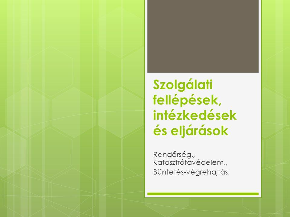 Szolgálati fellépések, intézkedések és eljárások Rendőrség., Katasztrófavédelem., Büntetés-végrehajtás.