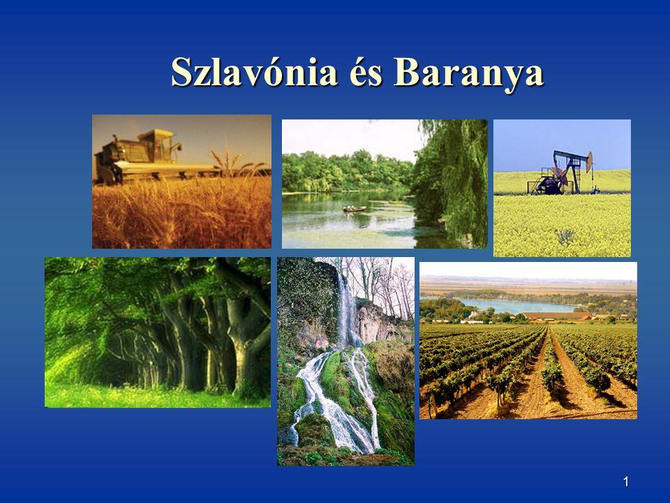 2 ELHELYEZKEDÉS -Horvátország ÉK része, három folyó határolja:észak felől a Dráva, keletről a Duna, délről pedig a Száva