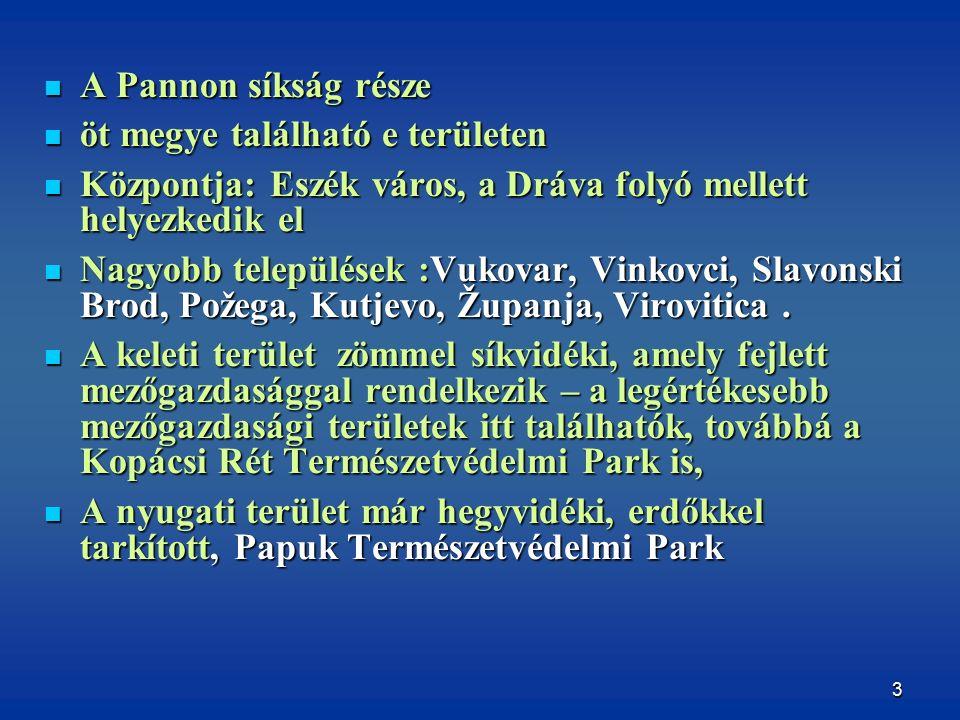 3 A Pannon síkság része A Pannon síkság része öt megye található e területen öt megye található e területen Központja: Eszék város, a Dráva folyó mellett helyezkedik el Központja: Eszék város, a Dráva folyó mellett helyezkedik el Nagyobb települések :Vukovar, Vinkovci, Slavonski Brod, Požega, Kutjevo, Županja, Virovitica.
