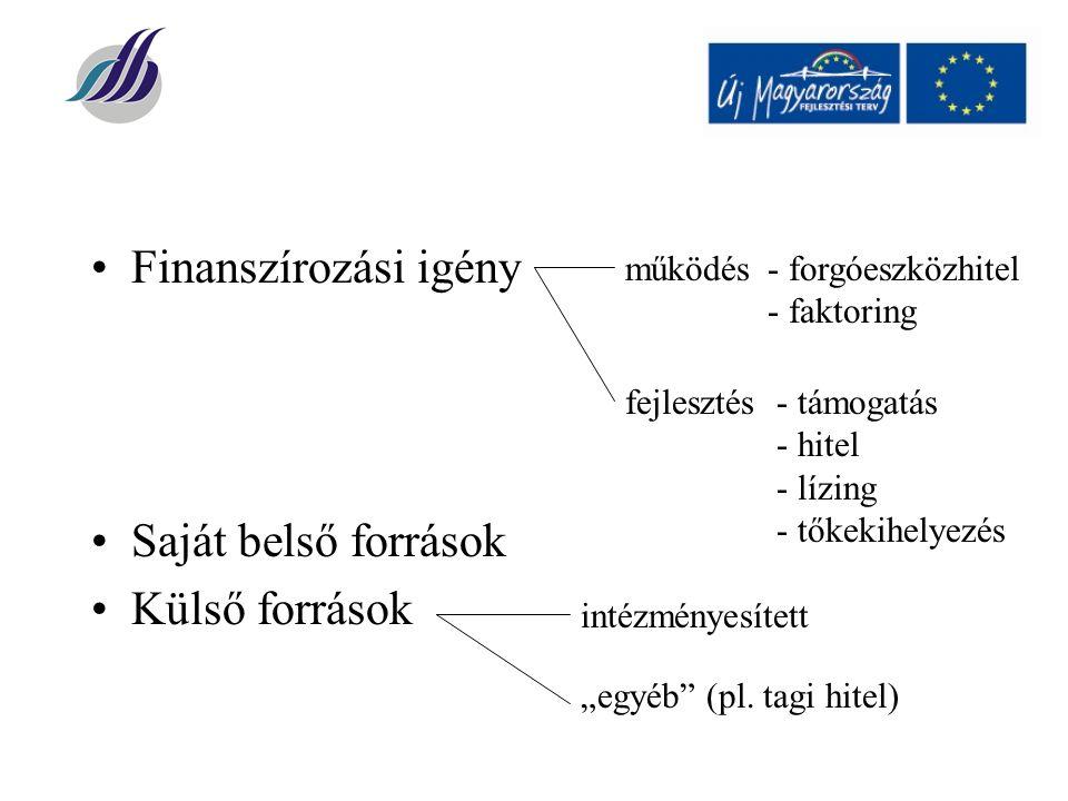 """Finanszírozási igény Saját belső források Külső források működés- forgóeszközhitel - faktoring fejlesztés- támogatás - hitel - lízing - tőkekihelyezés intézményesített """"egyéb (pl."""