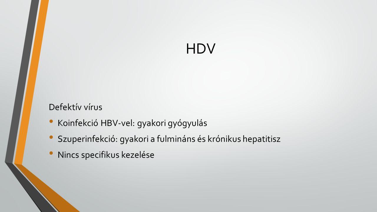 HDV Defektív vírus Koinfekció HBV-vel: gyakori gyógyulás Szuperinfekció: gyakori a fulmináns és krónikus hepatitisz Nincs specifikus kezelése