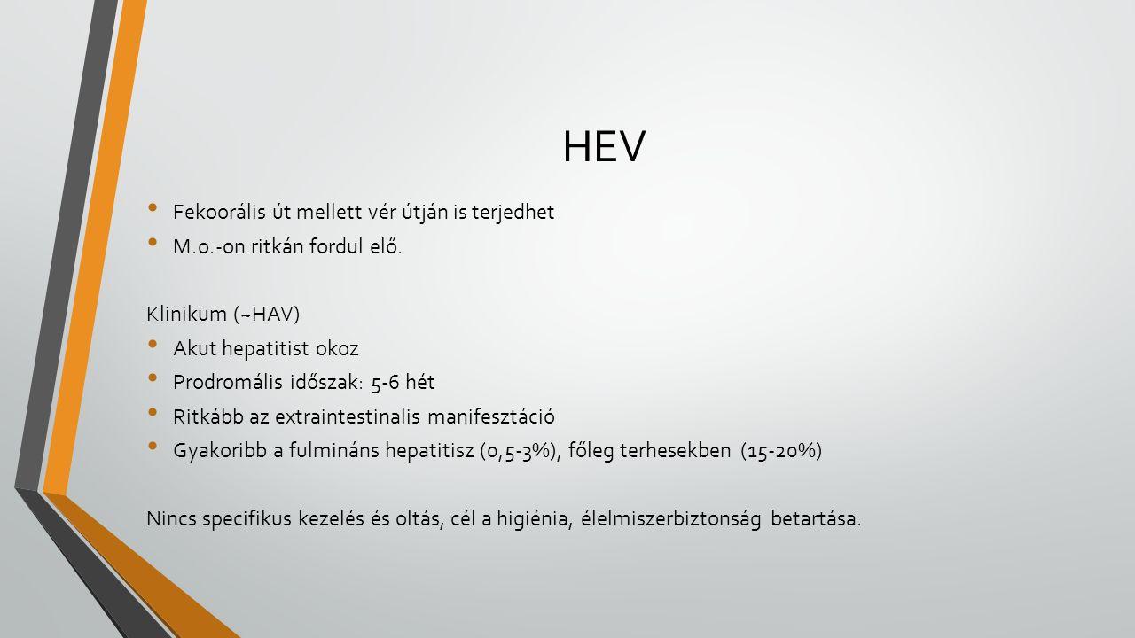 HEV Fekoorális út mellett vér útján is terjedhet M.o.-on ritkán fordul elő. Klinikum (~HAV) Akut hepatitist okoz Prodromális időszak: 5-6 hét Ritkább
