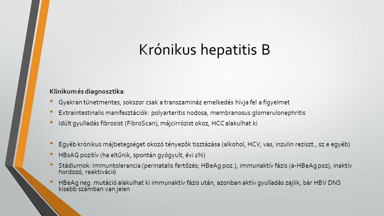 Krónikus hepatitis B Klinikum és diagnosztika: Gyakran tünetmentes, sokszor csak a transzamináz emelkedés hívja fel a figyelmet Extraintestinalis manifesztációk: polyarteritis nodosa, membranosus glomerulonephritis Idült gyulladás fibrosist (FibroScan), májcirrózist okoz, HCC alakulhat ki Egyéb krónikus májbetegséget okozó tényezők tisztázása (alkohol, HCV, vas, inzulin reziszt., sz.e egyéb) HBsAG pozitív (ha eltűnik, spontán gyógyult, évi 1%) Stádiumok: Immuntolerancia (perinatalis fertőzés; HBeAg poz.), immunaktív fázis (a-HBeAg poz), inaktív hordozó, reaktiváció HBeAg neg.