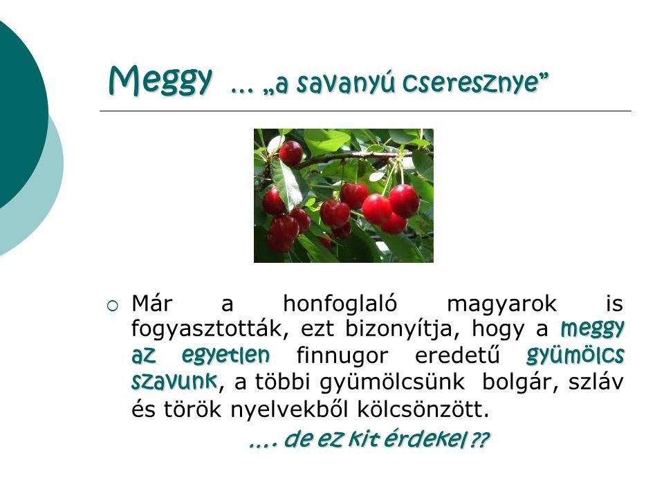 """Meggy … """"a savanyú cseresznye meggy az egyetlengyümölcs szavunk  Már a honfoglaló magyarok is fogyasztották, ezt bizonyítja, hogy a meggy az egyetlen finnugor eredetű gyümölcs szavunk, a többi gyümölcsünk bolgár, szláv és török nyelvekből kölcsönzött."""