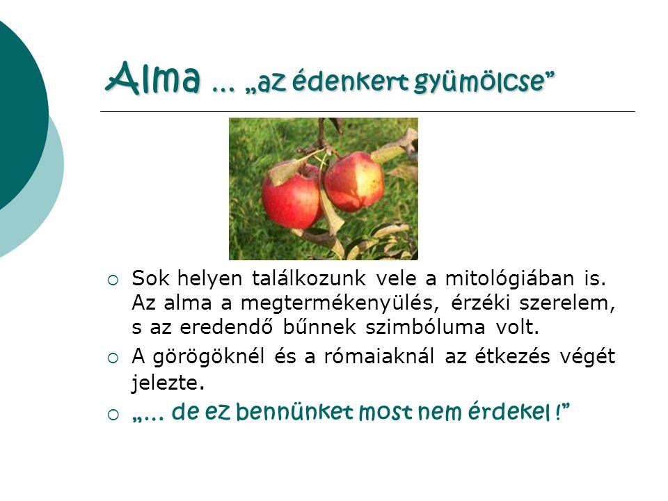 """Alma … """"az édenkert gyümölcse  Sok helyen találkozunk vele a mitológiában is."""