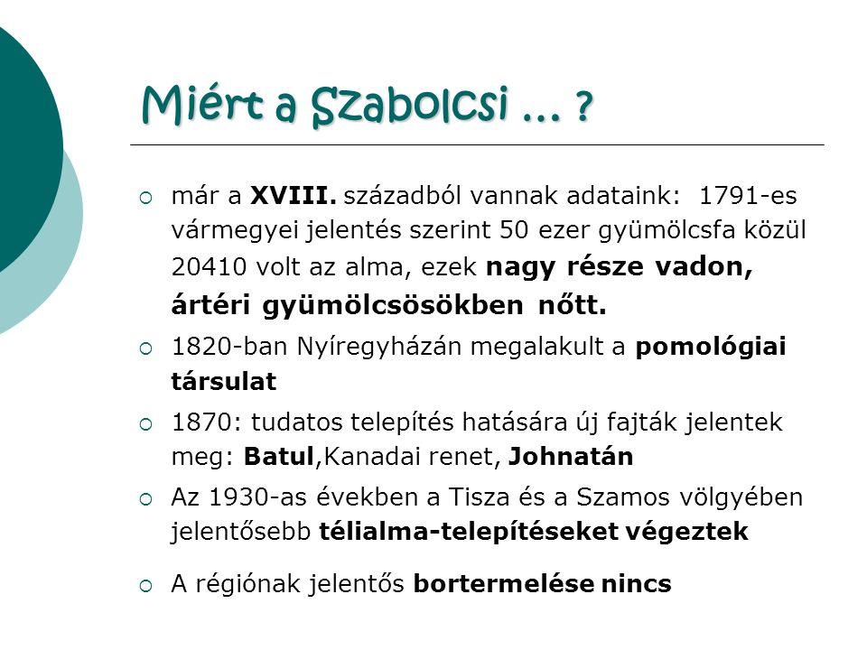 Miért a Szabolcsi … . már a XVIII.