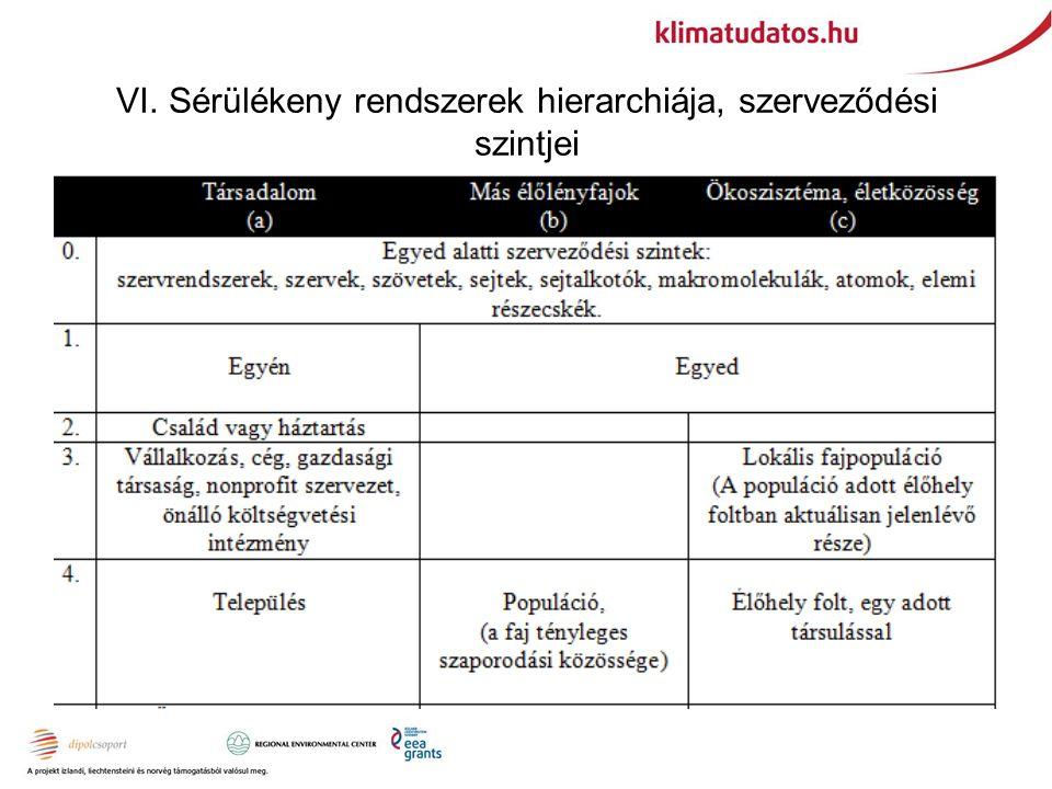 VI. Sérülékeny rendszerek hierarchiája, szerveződési szintjei