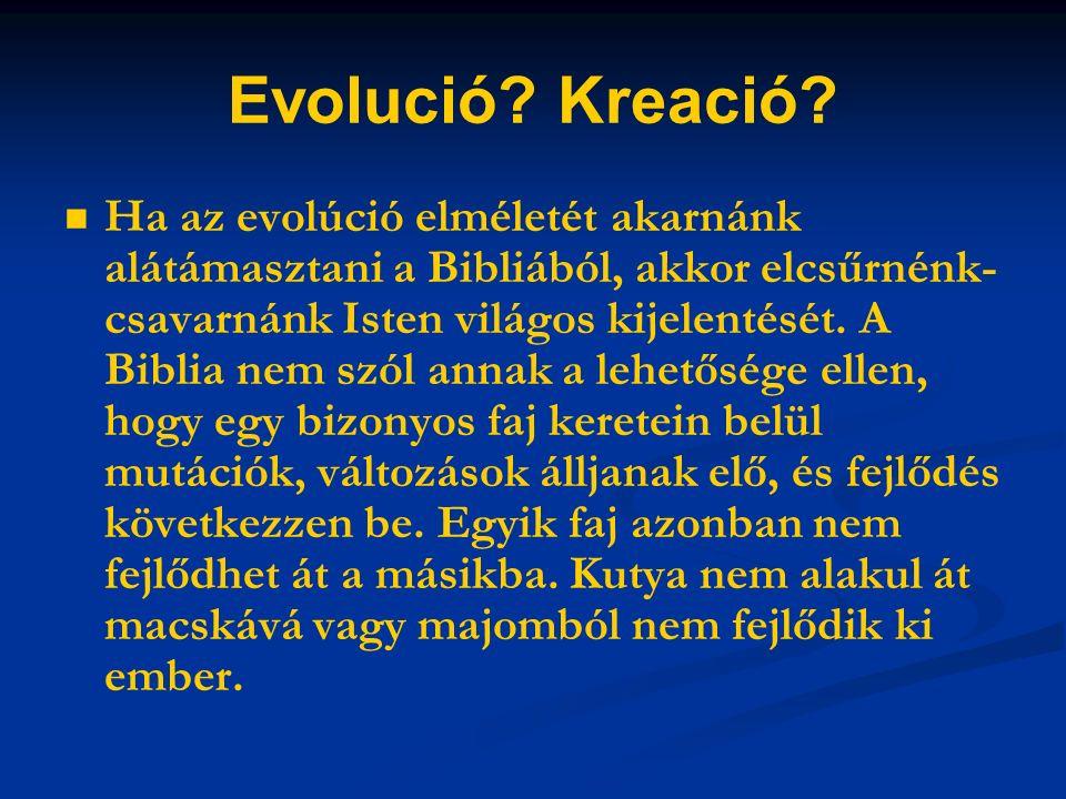 Evolució. Kreació.