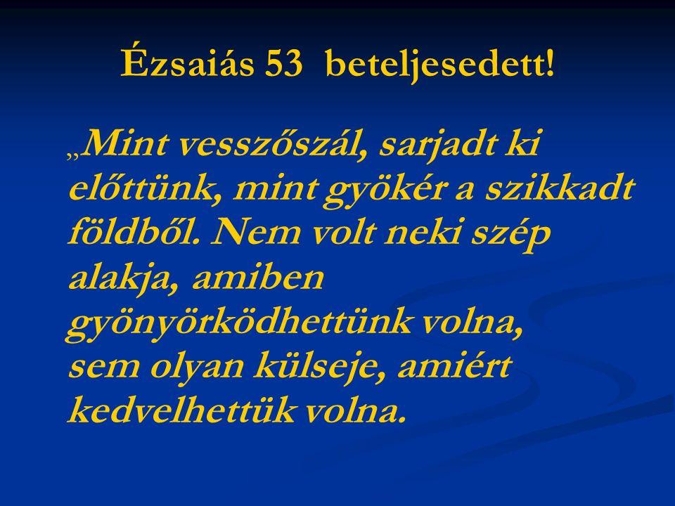 """Ézsaiás 53 beteljesedett. """" Mint vesszőszál, sarjadt ki előttünk, mint gyökér a szikkadt földből."""