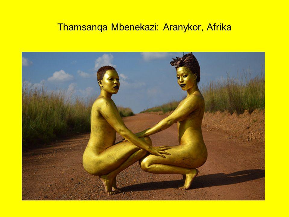 Thamsanqa Mbenekazi: Aranykor, Afrika