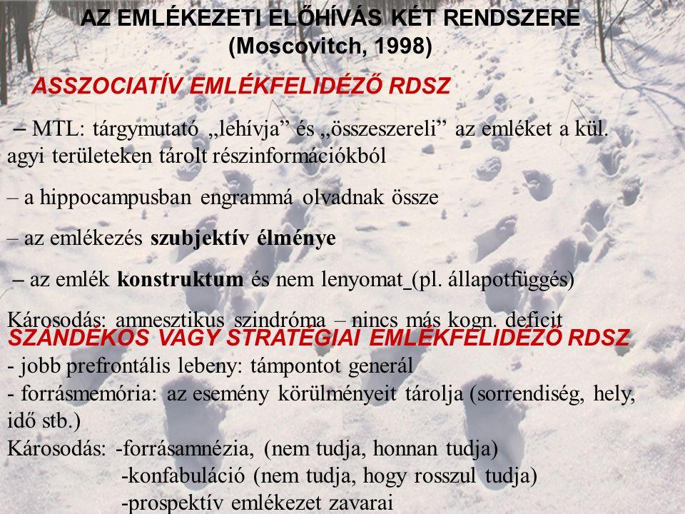 """AZ EMLÉKEZETI ELŐHÍVÁS KÉT RENDSZERE (Moscovitch, 1998) – MTL: tárgymutató """"lehívja és """"összeszereli az emléket a kül."""
