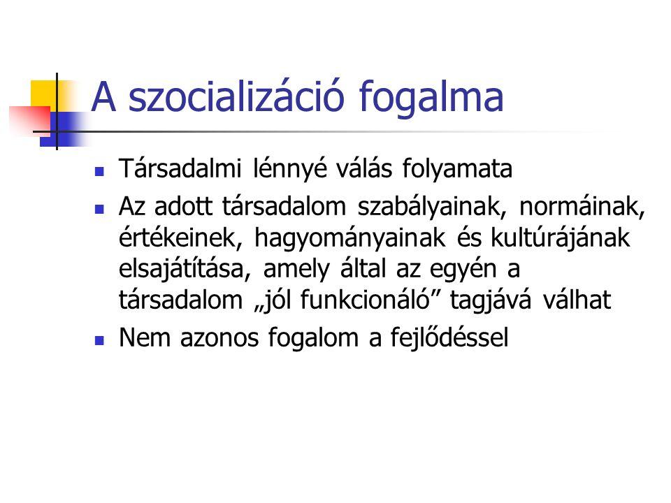 Család (elsődleges szintér) Oktatási intézmények (óvoda, iskola) – másodlagos szintér Munkahely – harmadlagos szintér A szocializáció szinterei