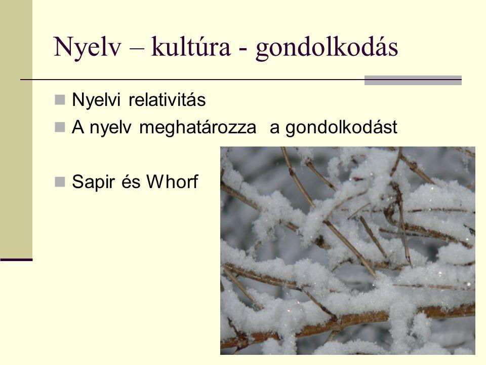 Nyelv – kultúra - gondolkodás Nyelvi relativitás A nyelv meghatározza a gondolkodást Sapir és Whorf