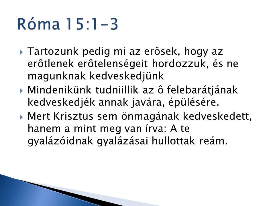  Tartozunk pedig mi az erôsek, hogy az erôtlenek erôtelenségeit hordozzuk, és ne magunknak kedveskedjünk  Mindenikünk tudniillik az ô felebarátjának kedveskedjék annak javára, épülésére.