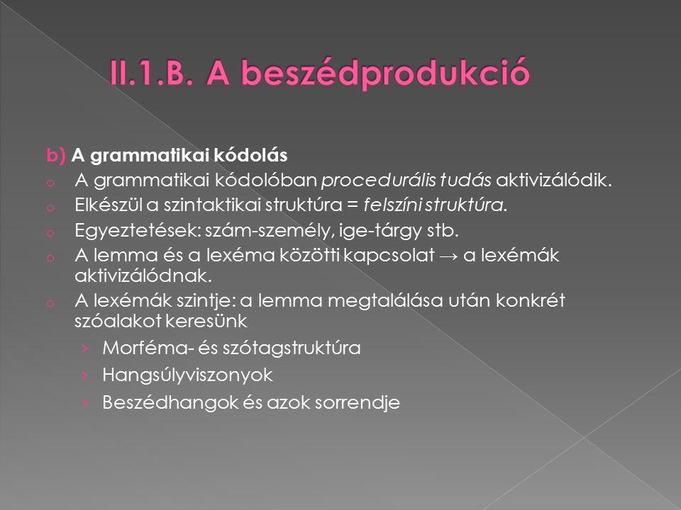 b) A grammatikai kódolás o A grammatikai kódolóban procedurális tudás aktivizálódik.