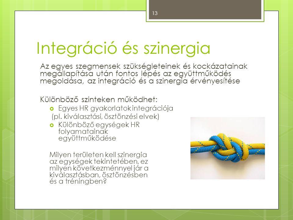 Integráció és szinergia Az egyes szegmensek szükségleteinek és kockázatainak megállapítása után fontos lépés az együttműködés megoldása, az integráció