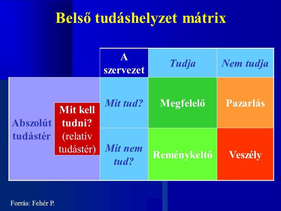 Belső tudáshelyzet mátrix A szervezet TudjaNem tudja Abszolút tudástér Mit tud MegfelelőPazarlás Mit kell tudni.
