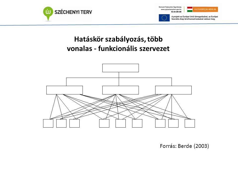 Hatáskör szabályozás, több vonalas - funkcionális szervezet Forrás: Berde (2003)