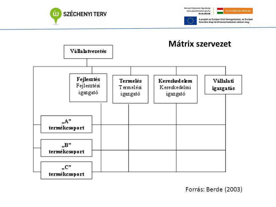 Mátrix szervezet Forrás: Berde (2003)