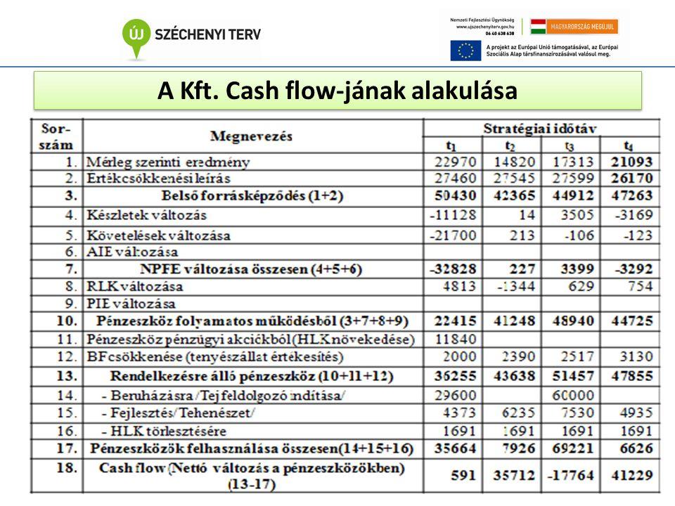 A Kft. Cash flow-jának alakulása