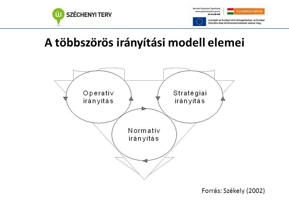 A többszörös irányítási modell elemei Forrás: Székely (2002)