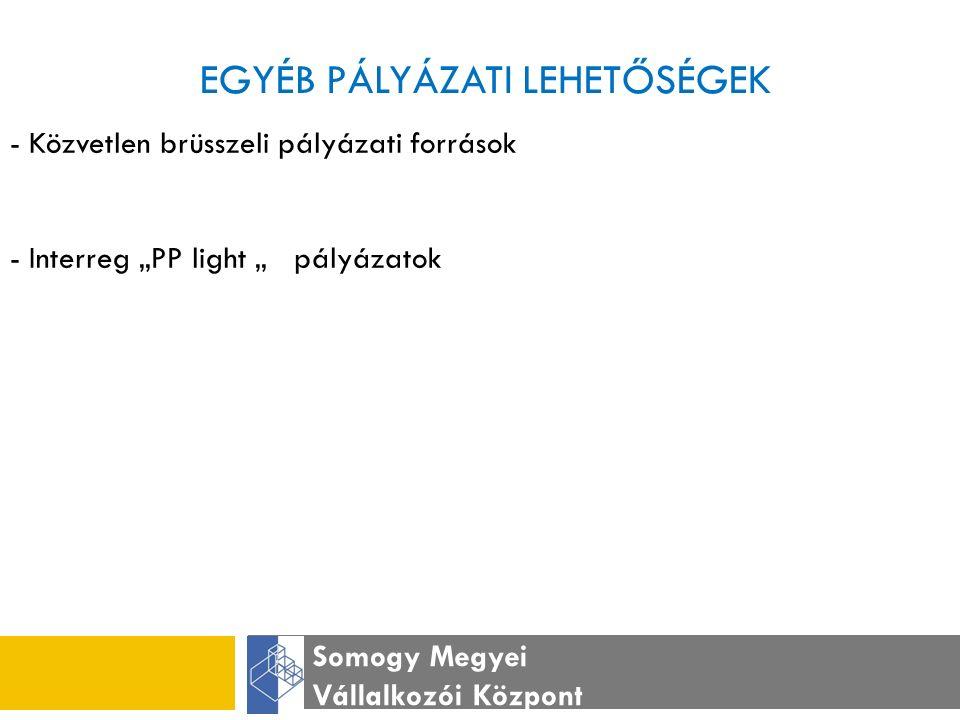 """EGYÉB PÁLYÁZATI LEHETŐSÉGEK Somogy Megyei Vállalkozói Központ - Közvetlen brüsszeli pályázati források - Interreg """"PP light """" pályázatok"""