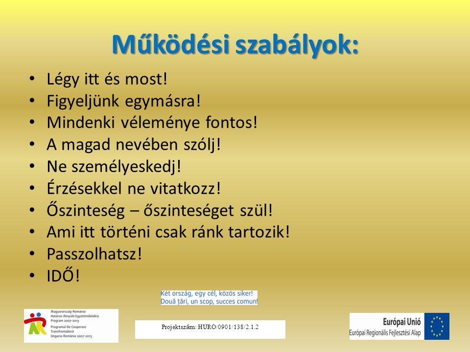 Herzberg kéttényezős elmélete Higiénés tényezők –fizetés –munkafeltételek –a munkahely biztonsága –személyes kapcsolatok  elégedetlenség MUNKAFELTÉTELEK Motivációs tényezők –felelősségvállalás –a nagyobb teljesítmény –a fejlődés –a karrierépítés lehetősége elégedettség A MUNKA TARTALMA Projektsz á m: HURO/0901/138/2.1.2