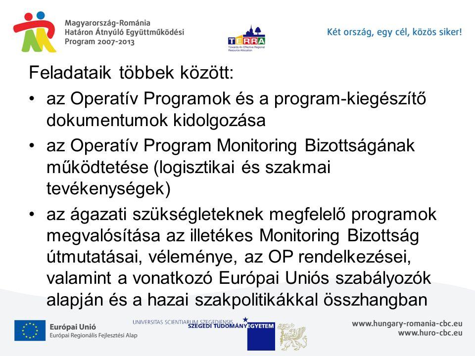 Feladataik többek között: az Operatív Programok és a program-kiegészítő dokumentumok kidolgozása az Operatív Program Monitoring Bizottságának működtetése (logisztikai és szakmai tevékenységek) az ágazati szükségleteknek megfelelő programok megvalósítása az illetékes Monitoring Bizottság útmutatásai, véleménye, az OP rendelkezései, valamint a vonatkozó Európai Uniós szabályozók alapján és a hazai szakpolitikákkal összhangban