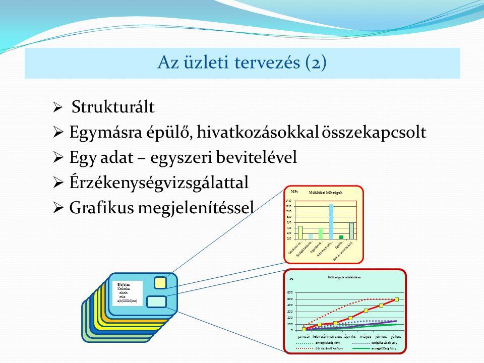  Strukturált  Egymásra épülő, hivatkozásokkal összekapcsolt  Egy adat – egyszeri bevitelével  Érzékenységvizsgálattal  Grafikus megjelenítéssel Az üzleti tervezés (2) Bjbjbjaa Knknka nknh mlo ajbjlllllkljooj