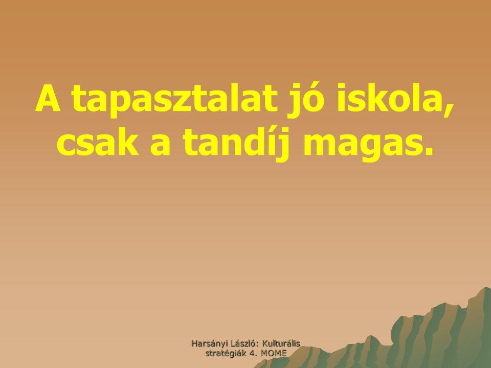 Harsányi László: Kulturális stratégiák 4. MOME A tapasztalat jó iskola, csak a tandíj magas.