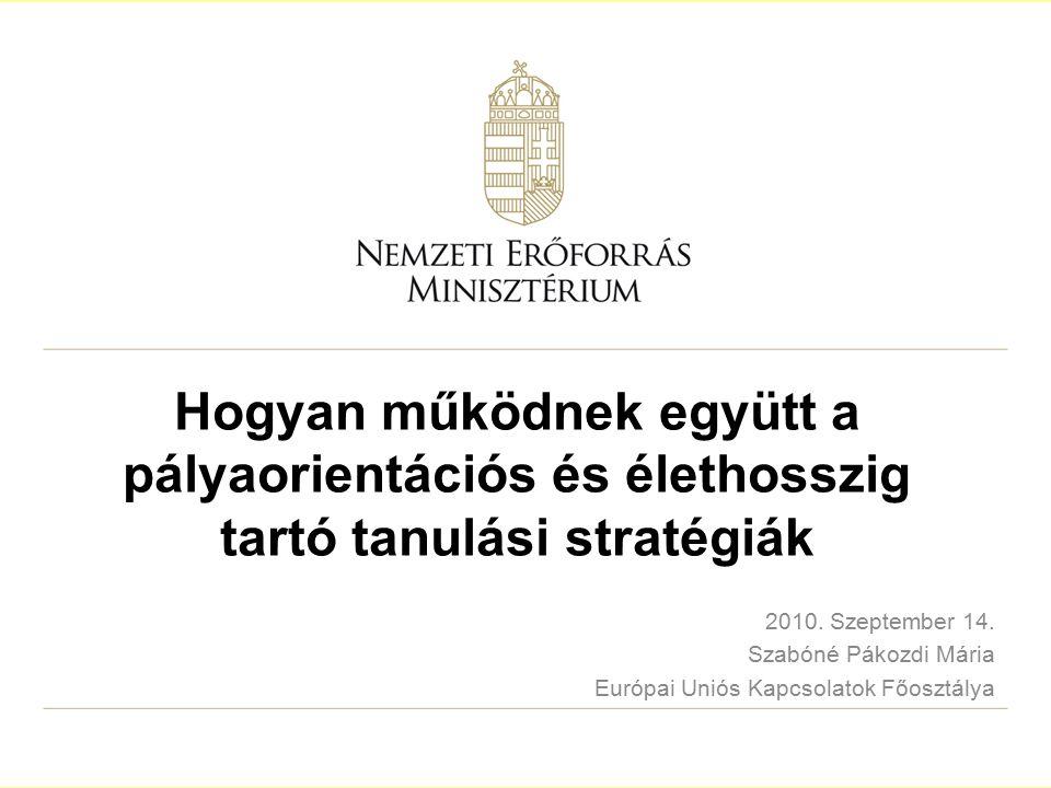 2 A prezentáció felépítése 1.A magyar LLL stratégia születése 2.A magyar LLL stratégia céljai 3.Prioritások és beavatkozási területek 4.A rendszer kiépítése 5.Pályatanácsadás 2005, 2007, 2009 6.Problémák 2005, Beszámoló 2007, 2009 7.EU: LLL stratégia a közeljövőben