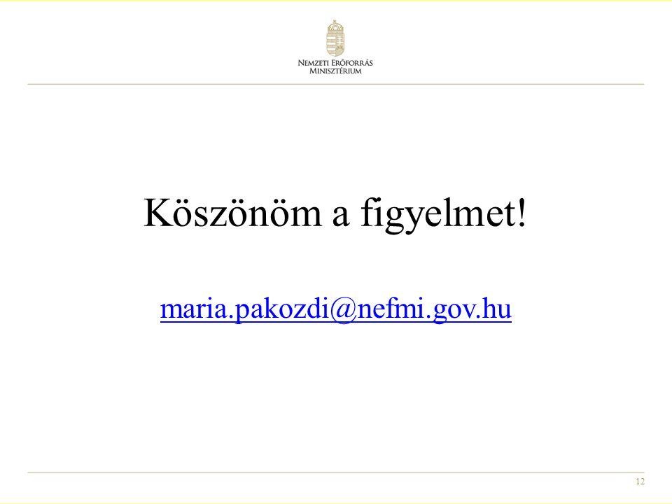 12 Köszönöm a figyelmet! maria.pakozdi@nefmi.gov.hu