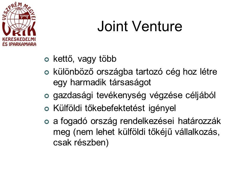Joint Venture kettő, vagy több különböző országba tartozó cég hoz létre egy harmadik társaságot gazdasági tevékenység végzése céljából Külföldi tőkebefektetést igényel a fogadó ország rendelkezései határozzák meg (nem lehet külföldi tőkéjű vállalkozás, csak részben)