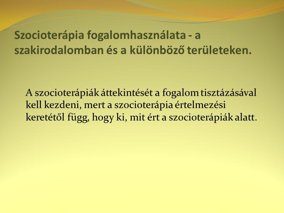 Szocioterápia fogalomhasználata - a szakirodalomban és a különböző területeken.
