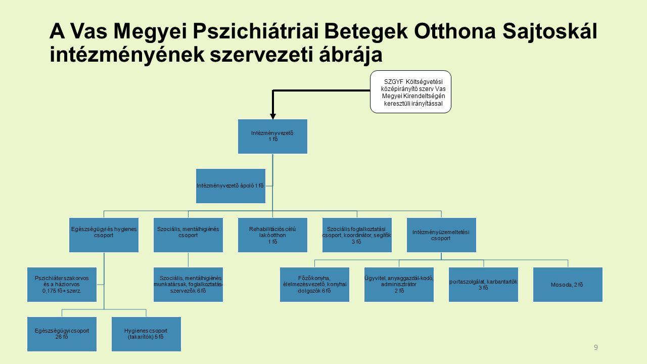 Intézményvezető 1 fő Egészségügyi és hygienes csoport Egészségügyi csoport 26 fő Hygienes csoport (takarítók) 5 fő Pszichiáter szakorvos és a háziorvos 0,175 fő+ szerz.