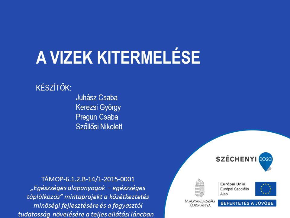 """A VIZEK KITERMELÉSE TÁMOP-6.1.2.B-14/1-2015-0001 """"Egészséges alapanyagok – egészséges táplálkozás mintaprojekt a közétkeztetés minőségi fejlesztésére és a fogyasztói tudatosság növelésére a teljes ellátási láncban KÉSZÍTŐK: Juhász Csaba Kerezsi György Pregun Csaba Szőllősi Nikolett"""