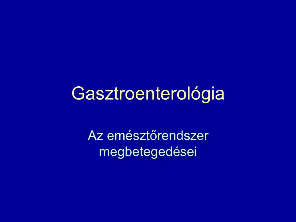 Gasztroenterológia Az emésztőrendszer megbetegedései