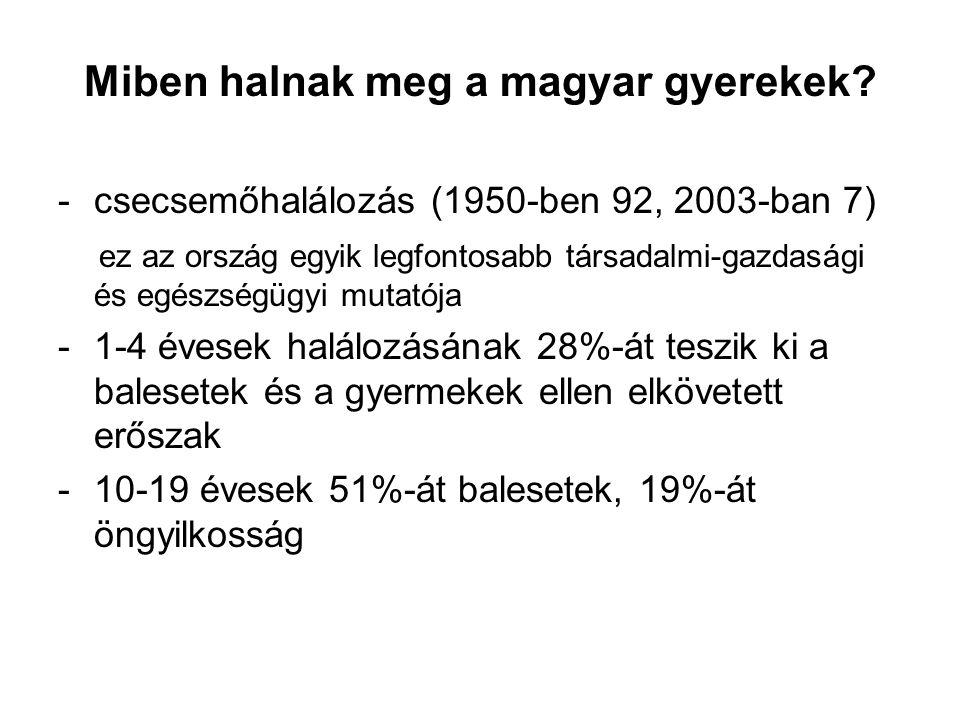 Miben halnak meg a magyar gyerekek.