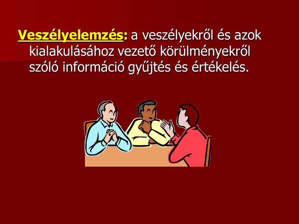 Veszélyelemzés: a veszélyekről és azok kialakulásához vezető körülményekről szóló információ gyűjtés és értékelés.