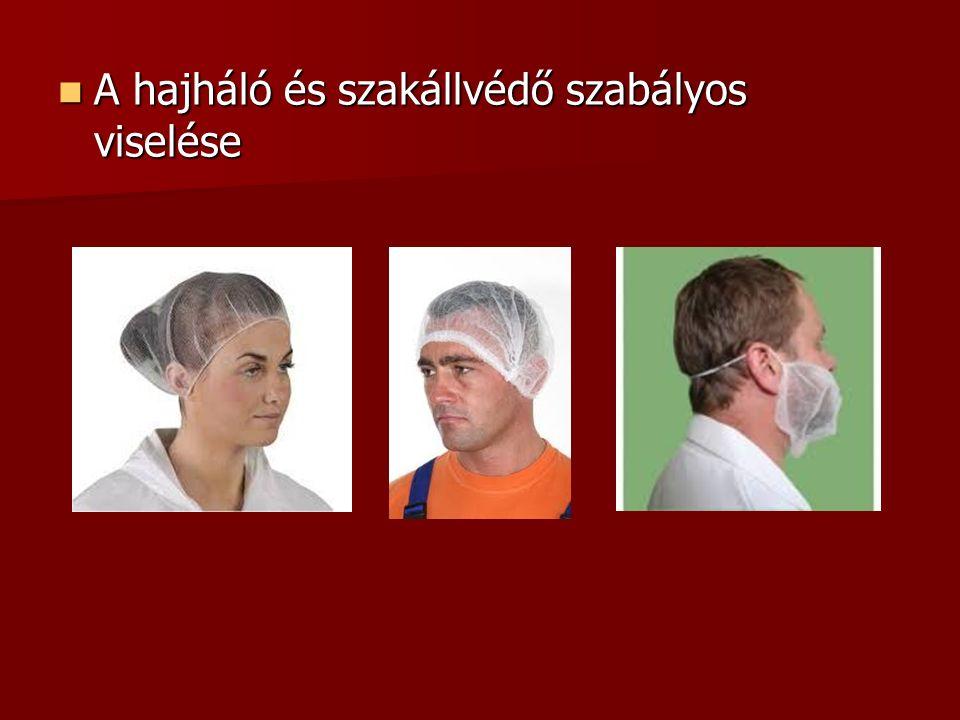 A hajháló és szakállvédő szabályos viselése A hajháló és szakállvédő szabályos viselése