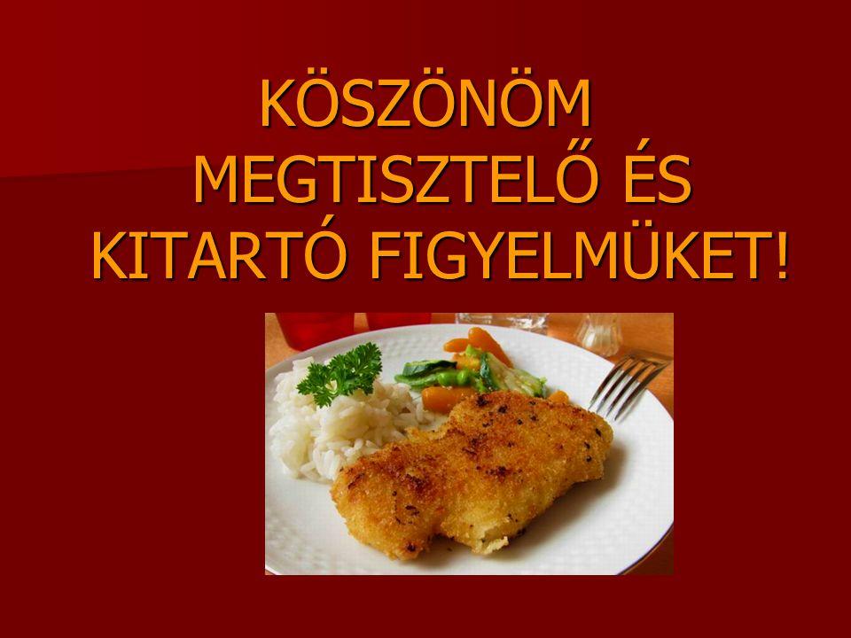KÖSZÖNÖM MEGTISZTELŐ ÉS KITARTÓ FIGYELMÜKET!
