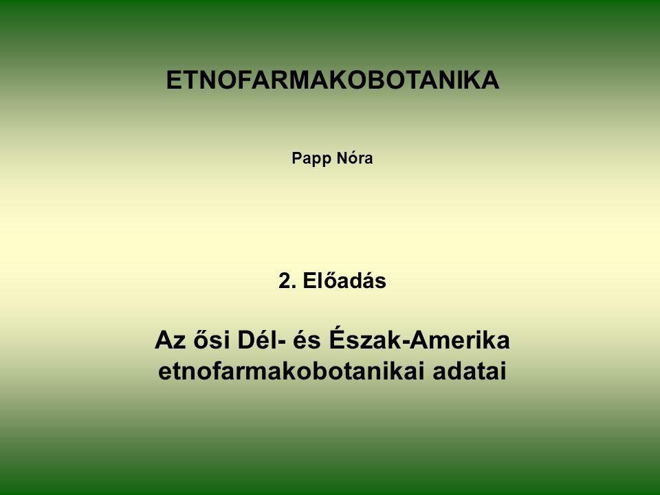 ETNOFARMAKOBOTANIKA Papp Nóra 2. Előadás Az ősi Dél- és Észak-Amerika etnofarmakobotanikai adatai