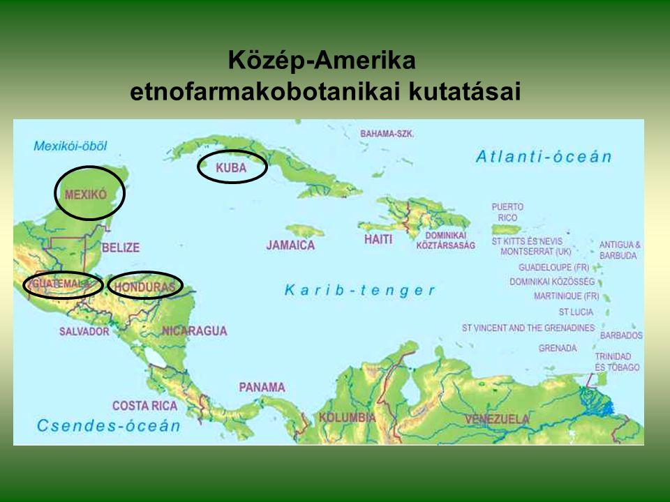 Közép-Amerika etnofarmakobotanikai kutatásai
