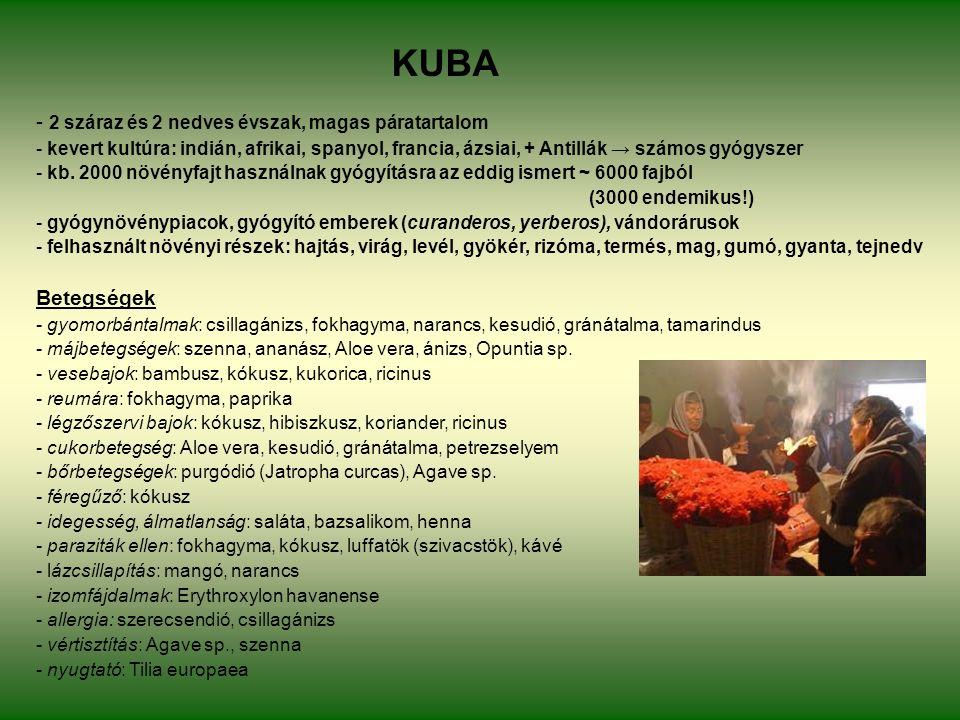 KUBA - 2 száraz és 2 nedves évszak, magas páratartalom - kevert kultúra: indián, afrikai, spanyol, francia, ázsiai, + Antillák → számos gyógyszer - kb.