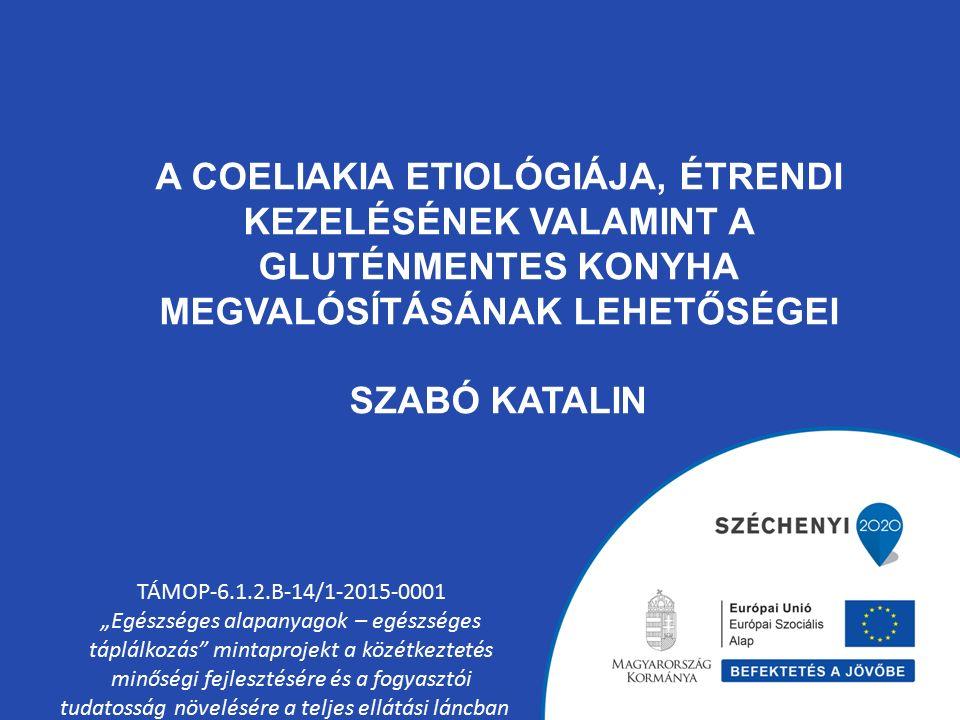 """A COELIAKIA ETIOLÓGIÁJA, ÉTRENDI KEZELÉSÉNEK VALAMINT A GLUTÉNMENTES KONYHA MEGVALÓSÍTÁSÁNAK LEHETŐSÉGEI SZABÓ KATALIN TÁMOP-6.1.2.B-14/1-2015-0001 """"Egészséges alapanyagok – egészséges táplálkozás mintaprojekt a közétkeztetés minőségi fejlesztésére és a fogyasztói tudatosság növelésére a teljes ellátási láncban"""